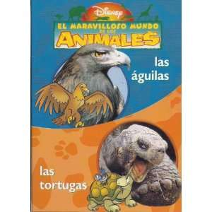 2EN1 LAS AGUILAS/LAS TORTUGAS: Movies & TV