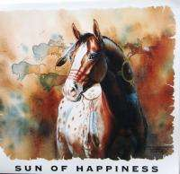 Sun of Happiness Paint American Indian Horse T Shirt M L XL 2XL Colors