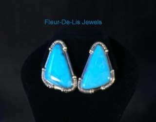 Jay King MINE FINDS Blue KINGMAN Turquoise Gallery Earrings
