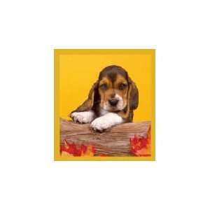 New Magnetic Bookmark Basset Puppy High Quality Modern