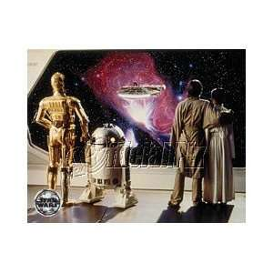 Star Wars (ESB) C 3PO, R2 D2, Luke, & Princess Leia Color