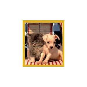 New Magnetic Bookmark Lets Rock N Roll Kitten & Puppy