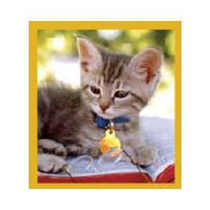 Magnetic Bookmark Smart Kitty, Beautiful and Colorful