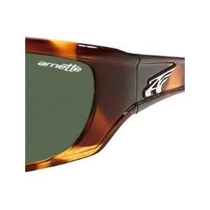 ... Arnette Sunglasses 4059 Dark Leopard  Sports   Outdoors ... cad7b40885