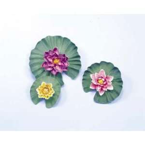 Large Lotus Pond Plants:  Kitchen & Dining