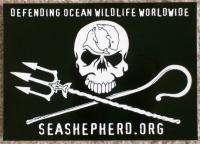 THREE (3) Whale Wars Sea Shepherd Flag Stickers SET