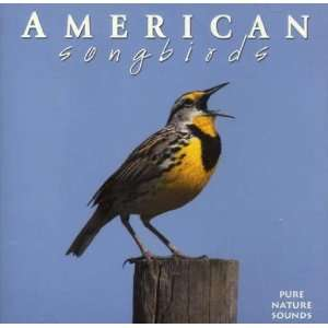 American Songbirds CD   recorded Exclusively in Forests