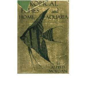 Tropical fishes and home aquaria; A practical guide to a