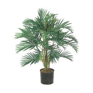 Areca Palm Tree in Round Plastic Pot (Pack of 2):  Home