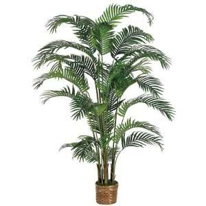 6 Areca Silk Palm Tree w/Wicker Basket (case of 2): Home