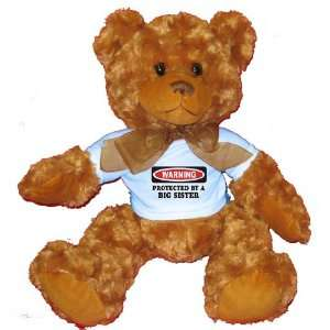 BY A BIG SISTER Plush Teddy Bear with BLUE T Shirt Toys & Games
