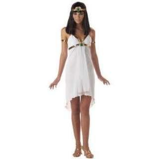 Egyptian Princess Teen Costume   Includes dress, headband with