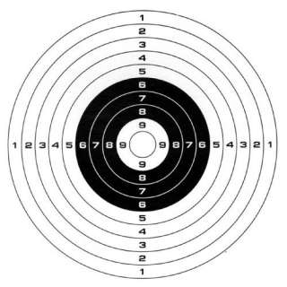Gamo Paper Targets (100 pack):  Sports & Outdoors